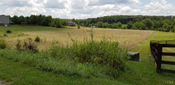 Photo of 31 Summerdale Lane, Lot 31, Evington, VA 24550 (MLS # 326536)