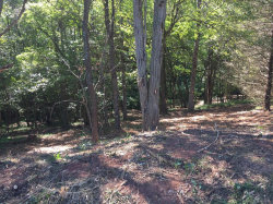 Photo of Quail Roost Drive, Forest, VA 24551 (MLS # 326587)
