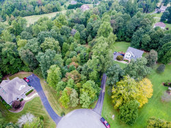Photo of Mcknights Way, Forest, VA 24551 (MLS # 327173)