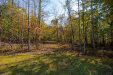 Photo of Lot 3 Isabel Acres, Lot 3, Madison Heights, VA 24572 (MLS # 328145)