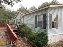 Photo of 89 Warner S Lndg, Hortense, GA 31543 (MLS # 8691708)