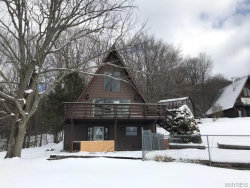 Photo of 8524 Stanfield Road, Colden, NY 14033 (MLS # B1099594)