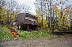 Photo of 5504 Bryant Hill Road, Ellicottville, NY 14731 (MLS # B1163242)
