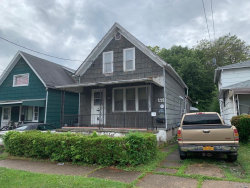 Photo of 114 Wex Avenue, Buffalo, NY 14211 (MLS # B1239301)