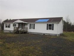 Photo of 586 Caswell Road, Dryden, NY 13068 (MLS # S1030585)