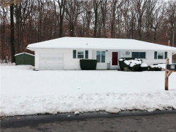 Photo of 129 Charles Drive, Camillus, NY 13031 (MLS # S1159598)