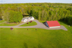 Photo of 1161 County Route 4, Palermo, NY 13036 (MLS # S1195169)