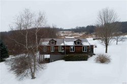 Photo of 1228 State Route 80 Road, Otisco, NY 13159 (MLS # S1315017)