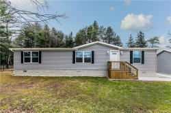 Photo of 1068 County Line Road, Granby, NY 13069 (MLS # S1315350)