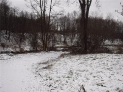 Photo of 4892 Route 430, Ellery, NY 14712 (MLS # R1163974)