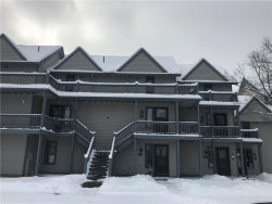Photo of 88 Wildflower, Ellicottville, NY 14731 (MLS # B1091318)