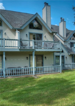Photo of 93 Wildflower, Ellicottville, NY 14731 (MLS # B1131771)
