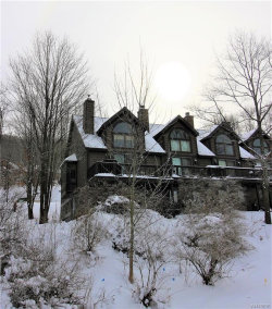 Photo of 46 Sunset Rd - The Woods Road, Ellicottville, NY 14731 (MLS # B1168896)