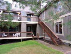 Photo of 4465 Olde Rd Camelot Road, Unit 4465, French Creek, NY 14724 (MLS # R1232405)