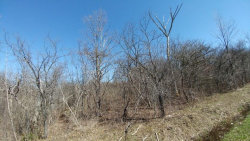 Photo of lot 1 part of 526 Bird Cemetery Road, Locke, NY 13092 (MLS # R1038386)