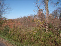Photo of 00 Franklin Road, Sempronius, NY 13118 (MLS # R1082198)