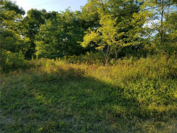 Photo of VL State Route 20a, Richmond, NY 14471 (MLS # R1226345)