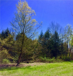 Photo of 8972 State Route 365, Floyd, NY 13476 (MLS # S1192186)