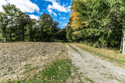 Photo of 0000 Clark Hollow Road, Lafayette, NY 13084 (MLS # S1300422)