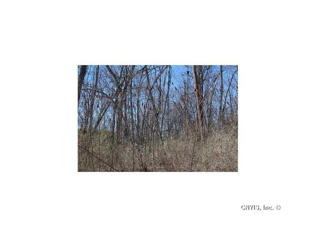 Photo for Lot 2 West Lake Road, Fleming, NY 13118 (MLS # S350943)