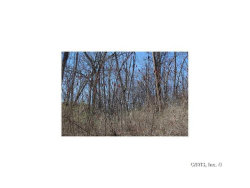 Photo of Lot 2 West Lake Road, Fleming, NY 13118 (MLS # S350943)