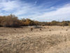 Photo of 2200 South OLD WEST, Pahrump, NV 89048 (MLS # 2048427)