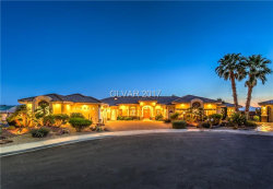 Photo of 1156 LITTLE BIRD Court, Henderson, NV 89011 (MLS # 1868350)