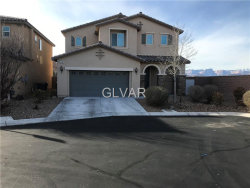 Photo of 11207 JEWEL DESERT Court, Las Vegas, NV 89179 (MLS # 1959265)