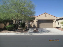 Photo of 4133 CACKLING GOOSE Drive, North Las Vegas, NV 89084 (MLS # 2006489)