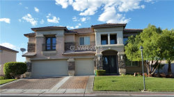 Photo of 9060 SHEEP RANCH Court, Las Vegas, NV 89143 (MLS # 2021608)