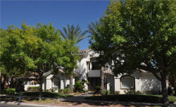 Photo of 9013 NIGHT OWL Court, Las Vegas, NV 89134 (MLS # 2028465)