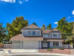 Photo of 9021 MOSS CREEK Circle, Las Vegas, NV 89117 (MLS # 2032947)