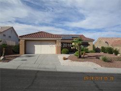 Photo of 11008 HAWK VALLEY Avenue, Las Vegas, NV 89134 (MLS # 2034402)