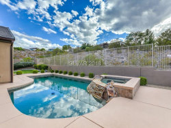 Photo of 23 SUMMIT WALK Trail, Henderson, NV 89052 (MLS # 2039948)