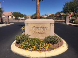 Photo of 2200 DOGWOOD RANCH Avenue, Henderson, NV 89052 (MLS # 2042494)