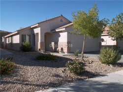 Photo of 11043 VALLEROSA Street, Las Vegas, NV 89141 (MLS # 2045404)