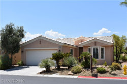 Photo of 4649 REGALO BELLO Street, Las Vegas, NV 89135 (MLS # 2052426)