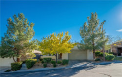 Photo of 11131 MOONLIGHT FIRE Court, Las Vegas, NV 89135 (MLS # 2053689)