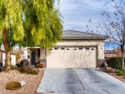Photo of 2576 Binary Stars Street, Henderson, NV 89044 (MLS # 2062108)