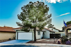 Photo of 8437 DUNPHY Court, Las Vegas, NV 89145 (MLS # 2063985)