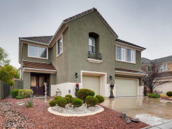 Photo of 9601 Royal Lamb Drive, Las Vegas, NV 89145 (MLS # 2070594)