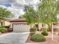 Photo of 2419 SANTERIA STAR Drive, Henderson, NV 89044 (MLS # 2074125)
