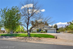 Photo of 235 IRVIN Avenue, Las Vegas, NV 89183 (MLS # 2087529)