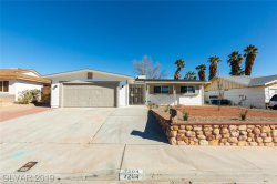 Photo of 7204 BLIZZARD Lane, Las Vegas, NV 89145 (MLS # 2089604)
