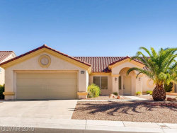 Photo of 10004 HUNTER SPRINGS Drive, Las Vegas, NV 89134 (MLS # 2110128)