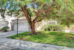 Photo of 7630 PLUNGING FALLS Drive, Las Vegas, NV 89131 (MLS # 2125245)