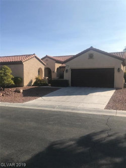 Photo of 2216 SAVANNAH RIVER Street, Henderson, NV 89044 (MLS # 2131839)