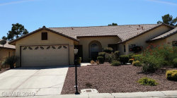 Photo of 4813 WINTERSET Drive, Las Vegas, NV 89130 (MLS # 2135224)