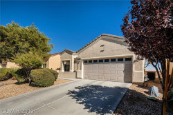 Photo of 7640 Homing Pigon Street, North Las Vegas, NV 89084 (MLS # 2144415)