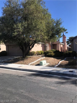 Photo of 2548 PINE RUN Road, Las Vegas, NV 89135 (MLS # 2149409)